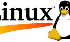 لینوکس در زندگی ما چه جایگاهی دارد