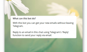 how-to-send-email-with-telegram (1)