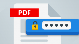 Create password protected PDF